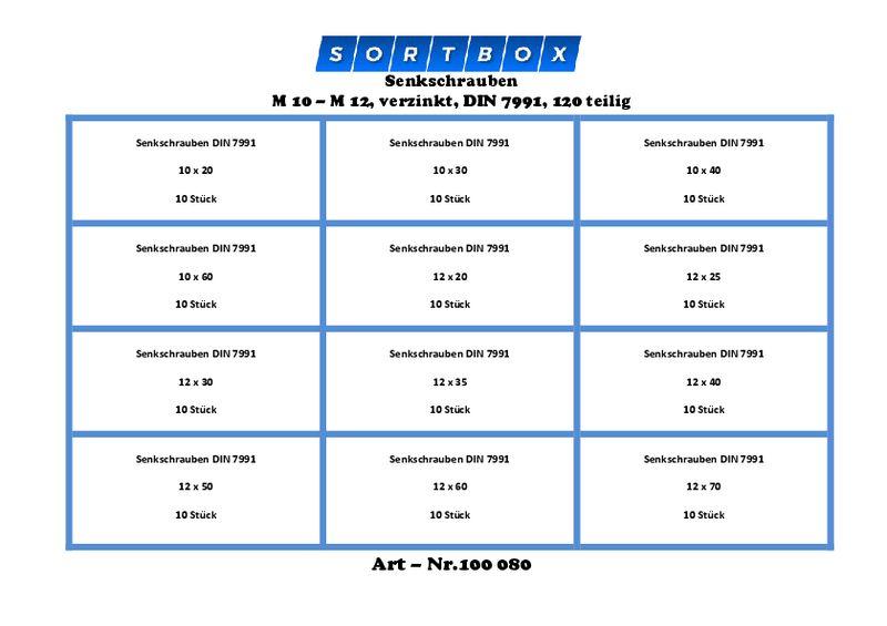Senkkopf  Schraube M10 x 100 V2A DIN 7991 5 Stück